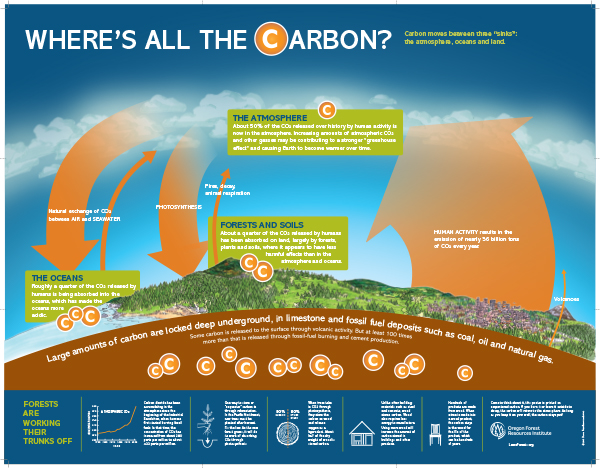 Where's All The Carbon?  (Poster)