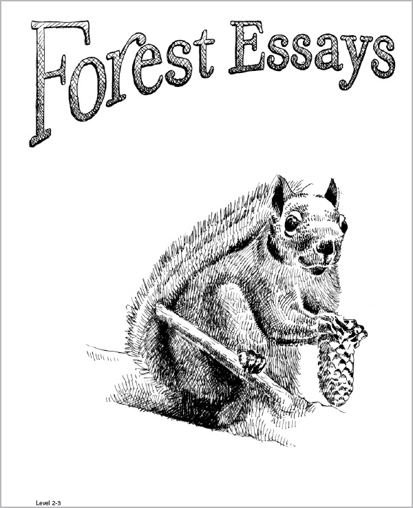 Forest Essays Grades 2-3