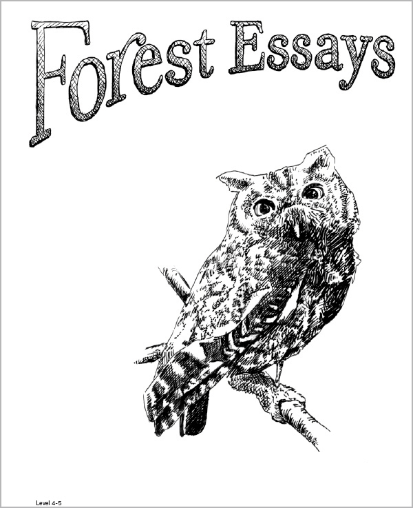 Forest Essays Grade 4-5