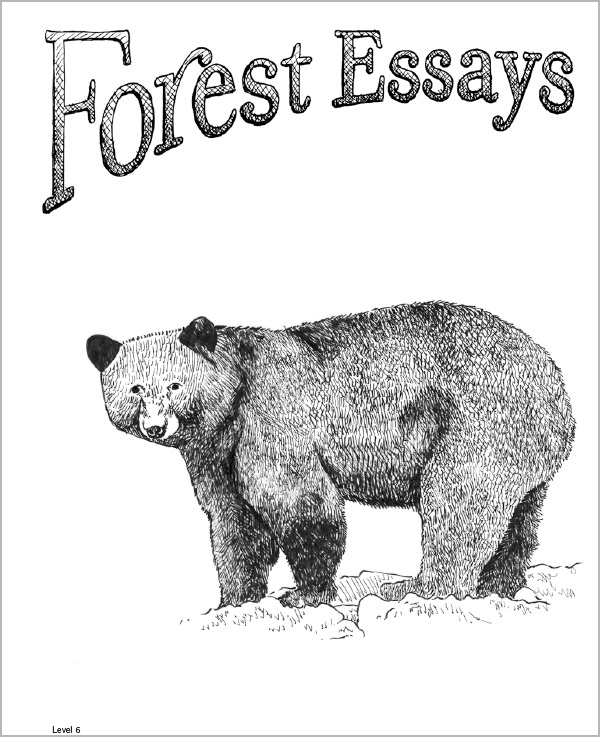 Forest Essays Grade 6