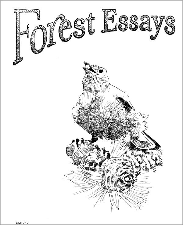 Forest Essays Grades 7-12