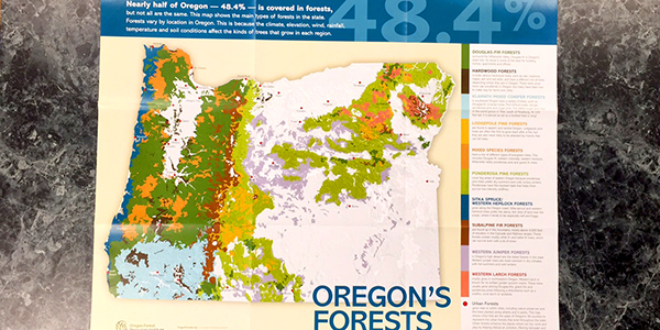 Oregon's Forests (Poster)