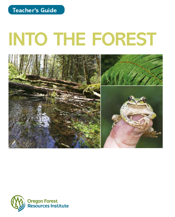 Into the Forest Teacher's Guide