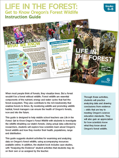 Life in the Forest Instruction Guide