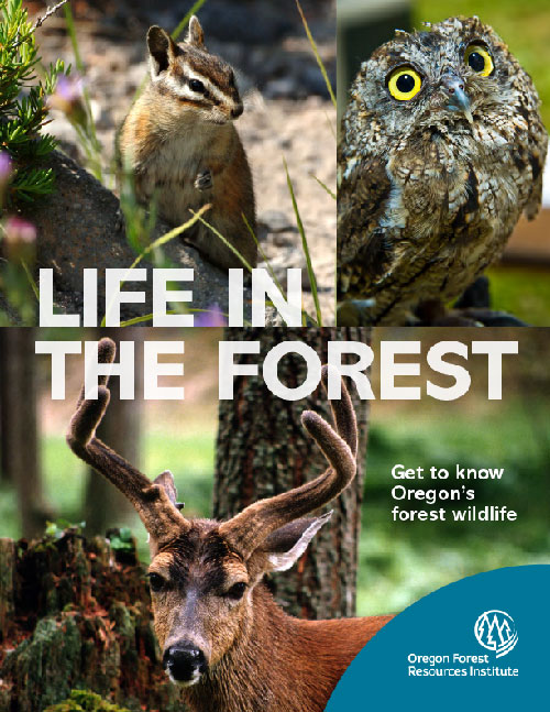 Life in the Forest: Get to know Oregon's forest wildlife