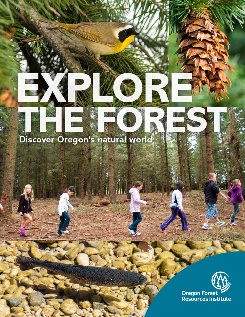 Explore the Forest-For Students-New