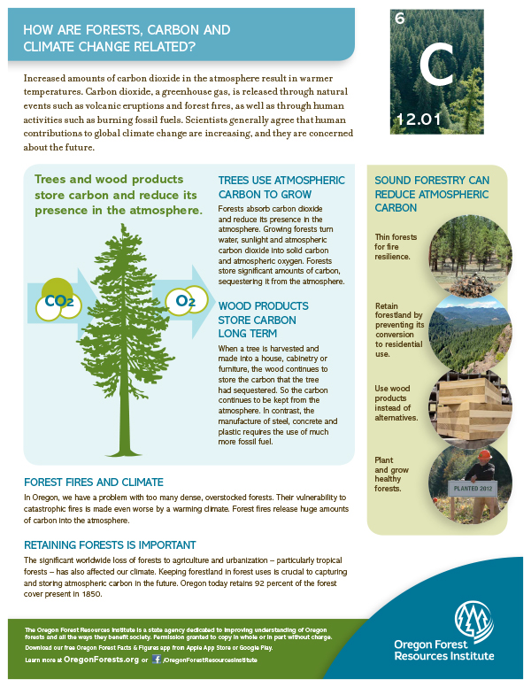 Forest Fact Sheet-Carbon and Climate