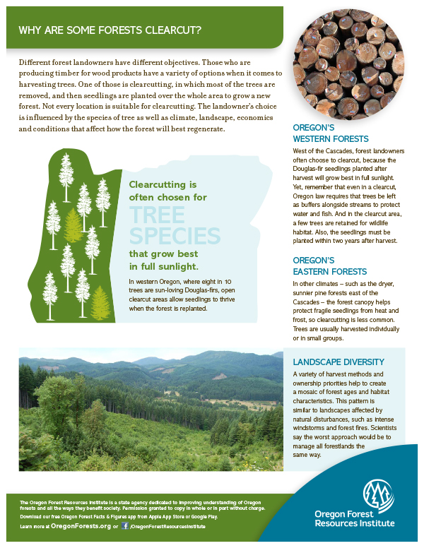 Forest Fact Sheet-Clearcutting