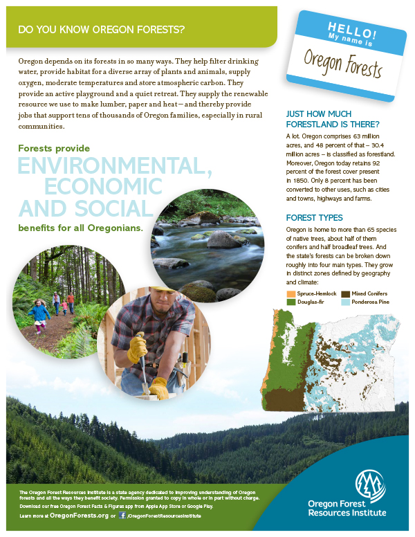 Forest Fact Sheet-Forests