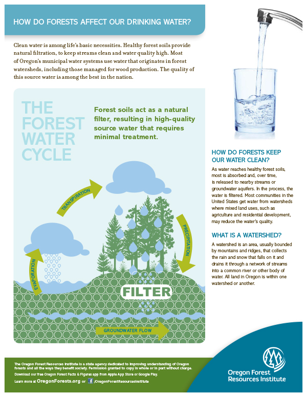 Forest Fact Sheet-Drinking Water