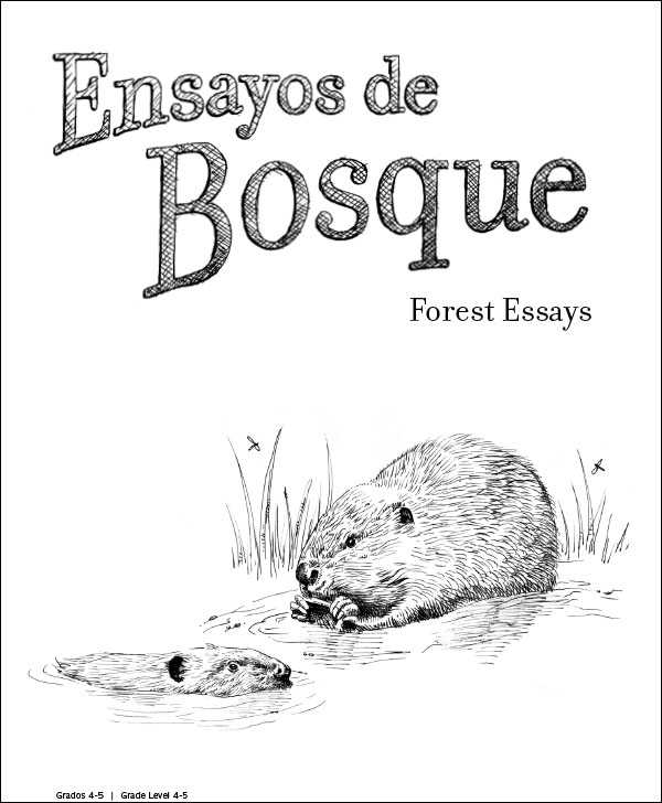 Forest Essays: Spanish for Grades 4-5