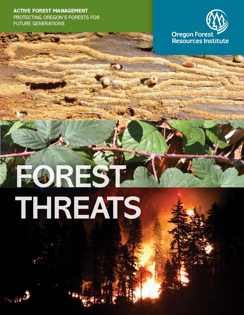 Forest Threats