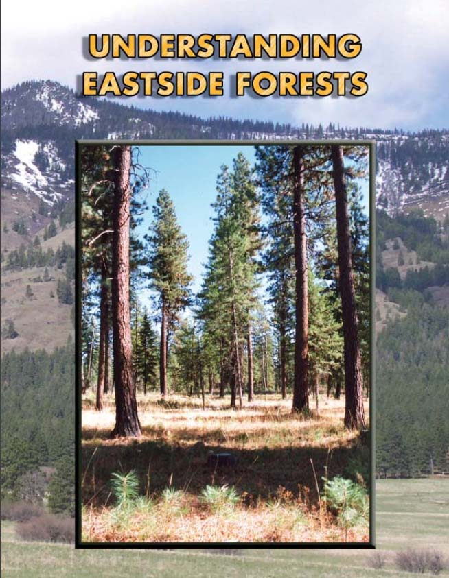 Understanding Eastside Forests